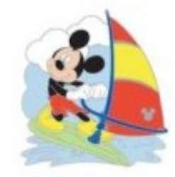 2020 Hidden Disney Series 1 - California Activities